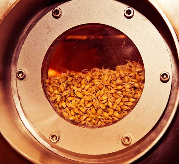 germination tank